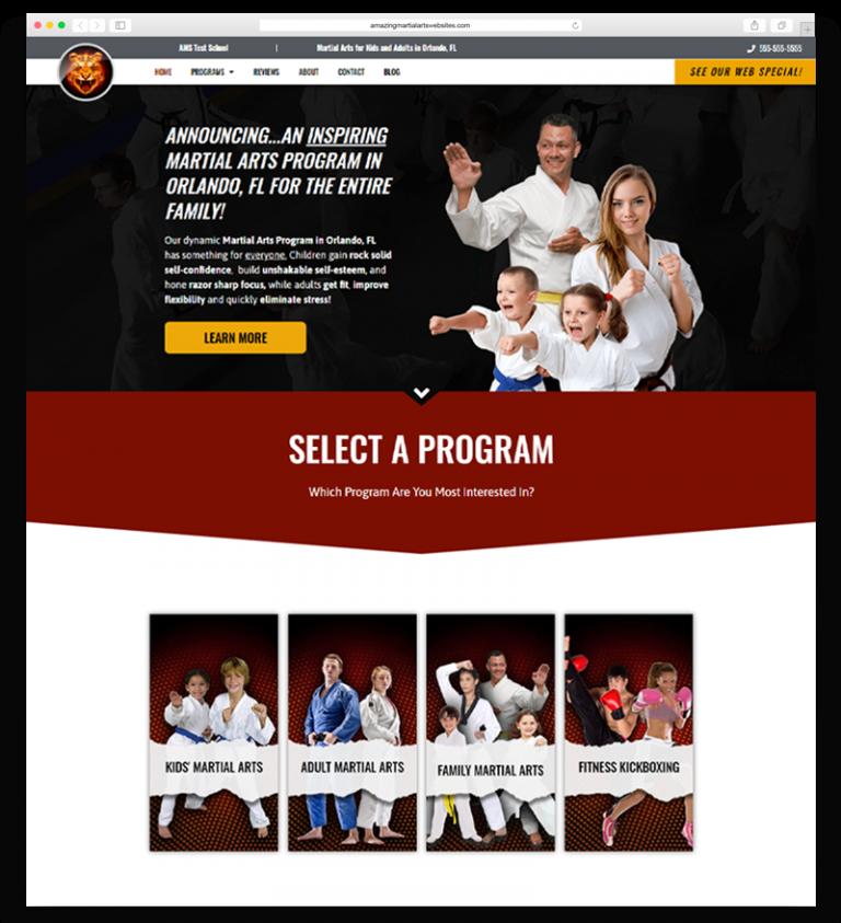 Amazing Martial Arts Websites Theme